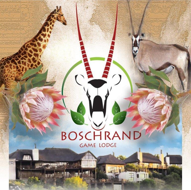 Boschrand-Lodge-1