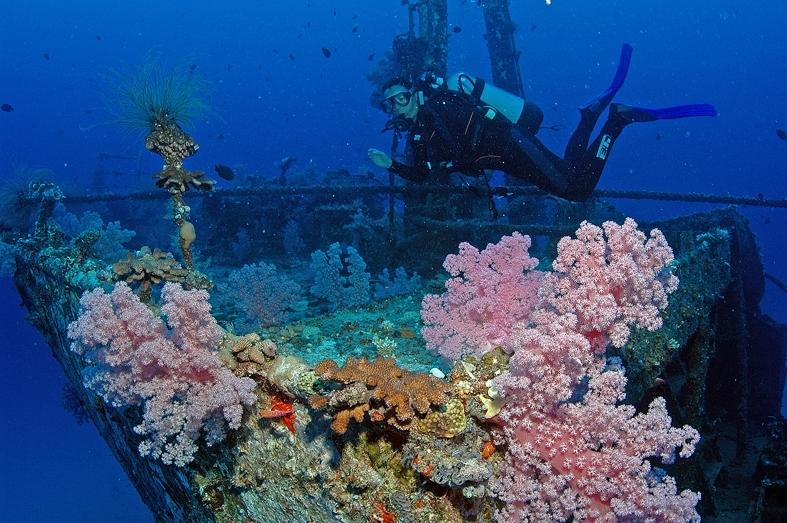 Dive Passion Mauritius 4